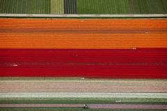 Portfolio luchtfotografie